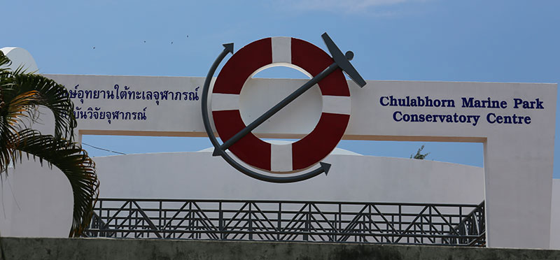 History-of-Chulabhorn-Underwater-Marine-Park-Project-36